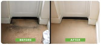 Before and After Carpet Cleaning in Chandler, AZ